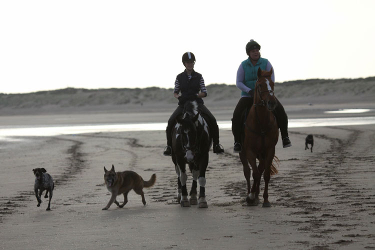 Horse riders at Camber